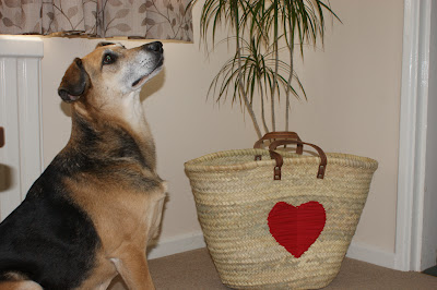 Cute Dog sat by a Celia Lindsell French Basket