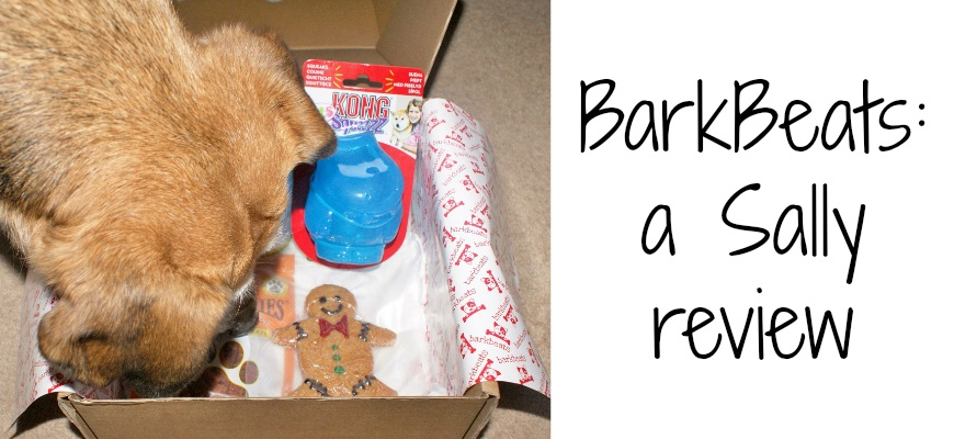 BarkBeats