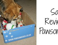 Pawsomebox