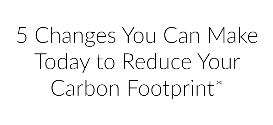 5 Changes You Can Make Today to Reduce Your Carbon Footprint