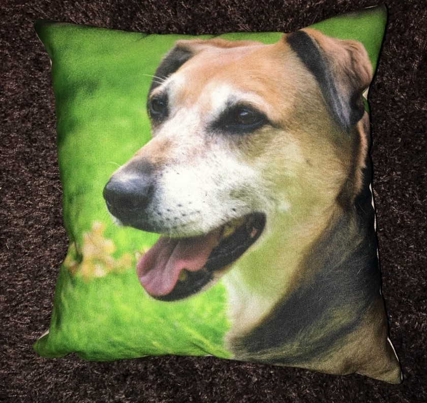 Snapfish Cushion