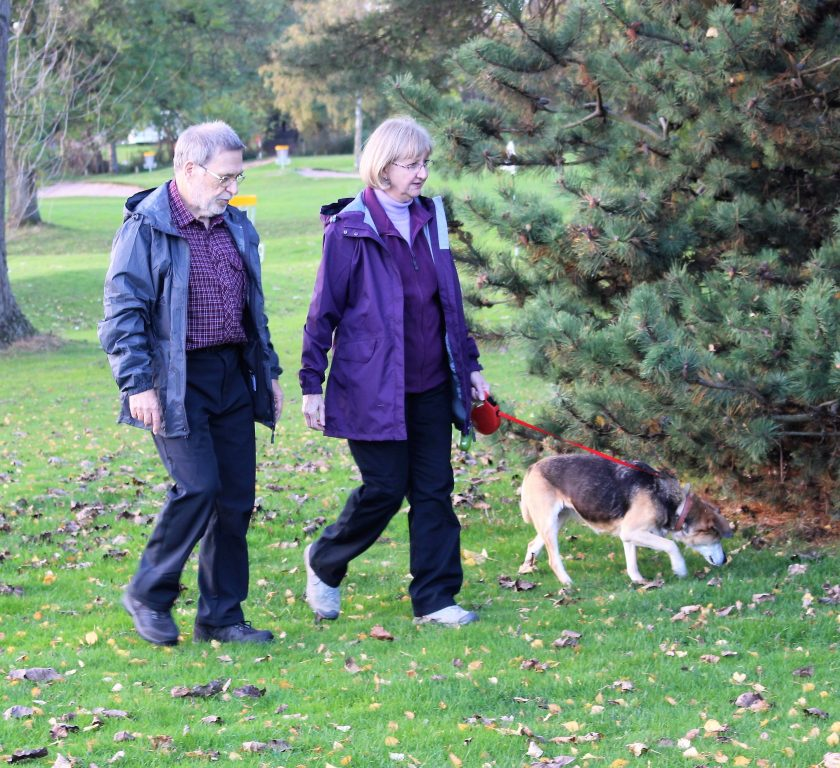 My parents walking the dog in the park wearing; Terry: BRASHER Men's Country Hiker Shoe, PETER STORM Men's Softshell II Trousers, PETER STORM Men's Packable Jacket and Sue: PETER STORM Women's Cyclone Waterproof Jacket, PETER STORM Women's Ramble II Lined Trousers, PETER STORM Women's Grace Gilet Photo from the Side